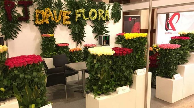International Flower Trade Expo (IFTEX) 2018 Recap